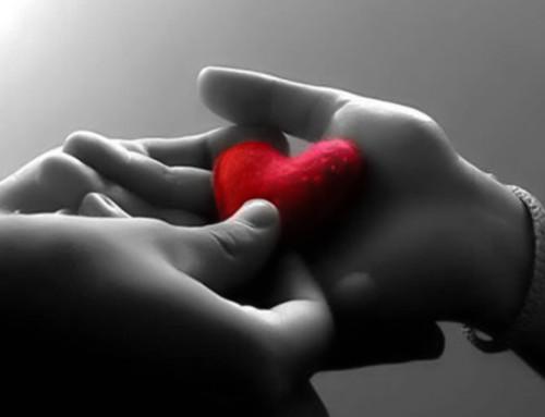 Любовь не нужно искать